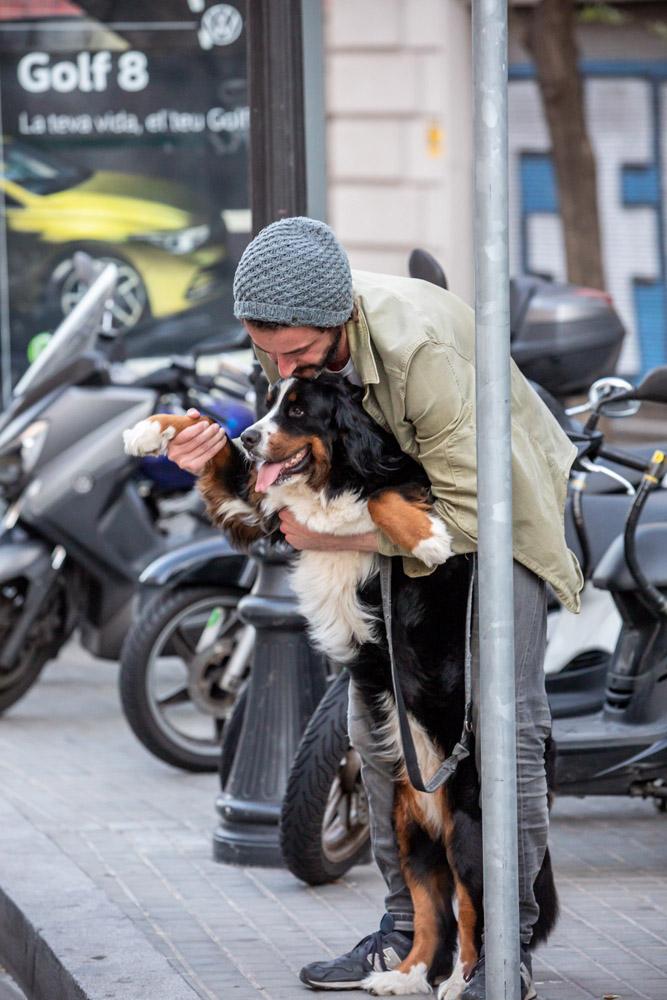 Señor haciendo saludar a su perro