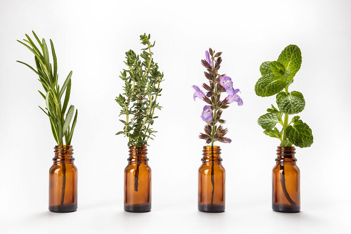 frascos y plantas medicinales